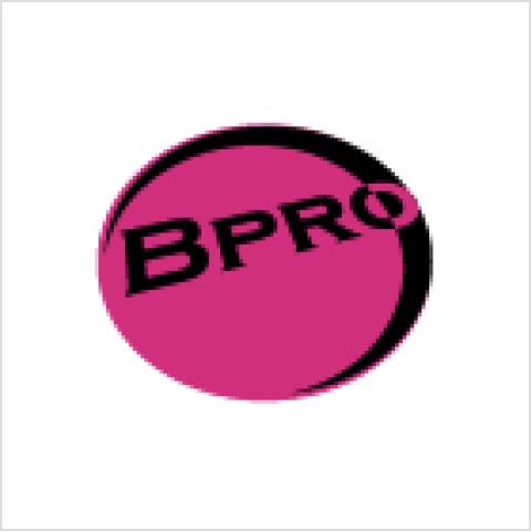 バルーンプロ検定試験(Bpro検定)